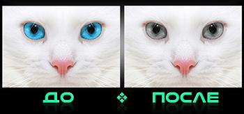 Фотошоп онлайн бесплатно цвет глаз в редакторе Photo after