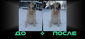 Фотошоп онлайн бесплатно сделает фото в нашем редакторе изображений